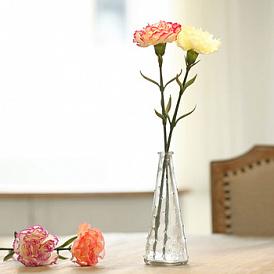 Hur man väljer en vas för blommor: ge en skönhet till inredningen